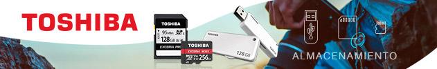 Toshiba Sept MRM